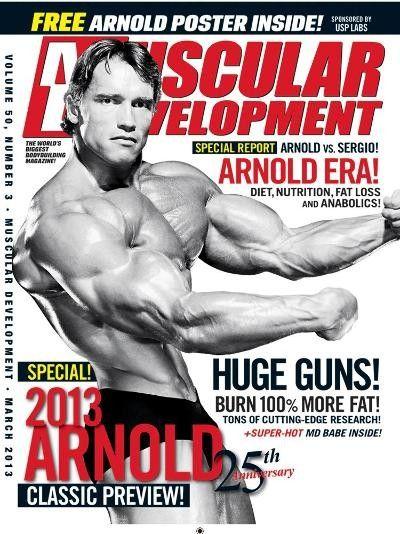 bodybuilding poster profitnesswrestlingacademy ca