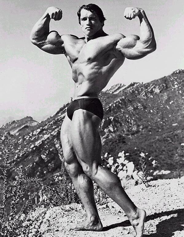 bodybuilding photos profitnesswrestlingacademy ca